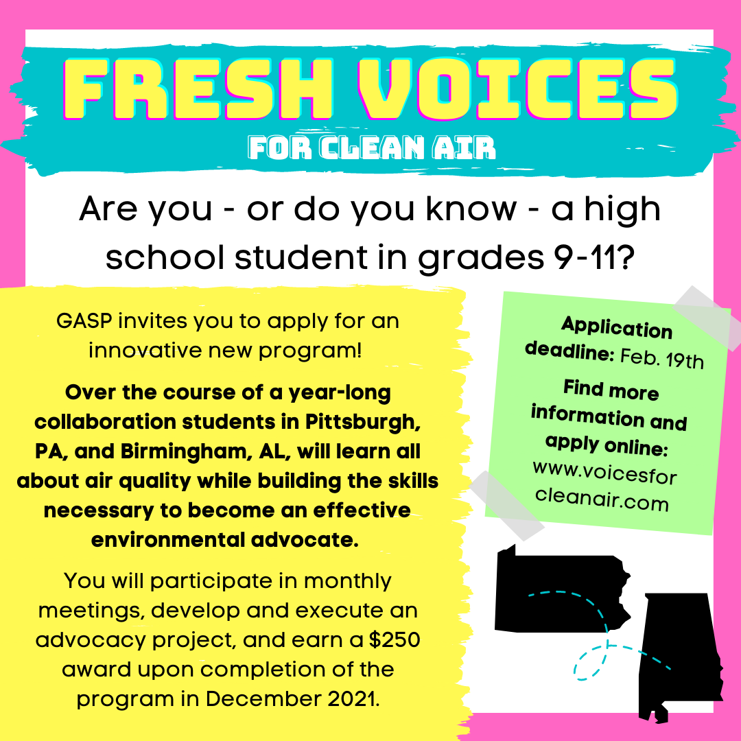 Fresh Voices for Clean Air info - IG size