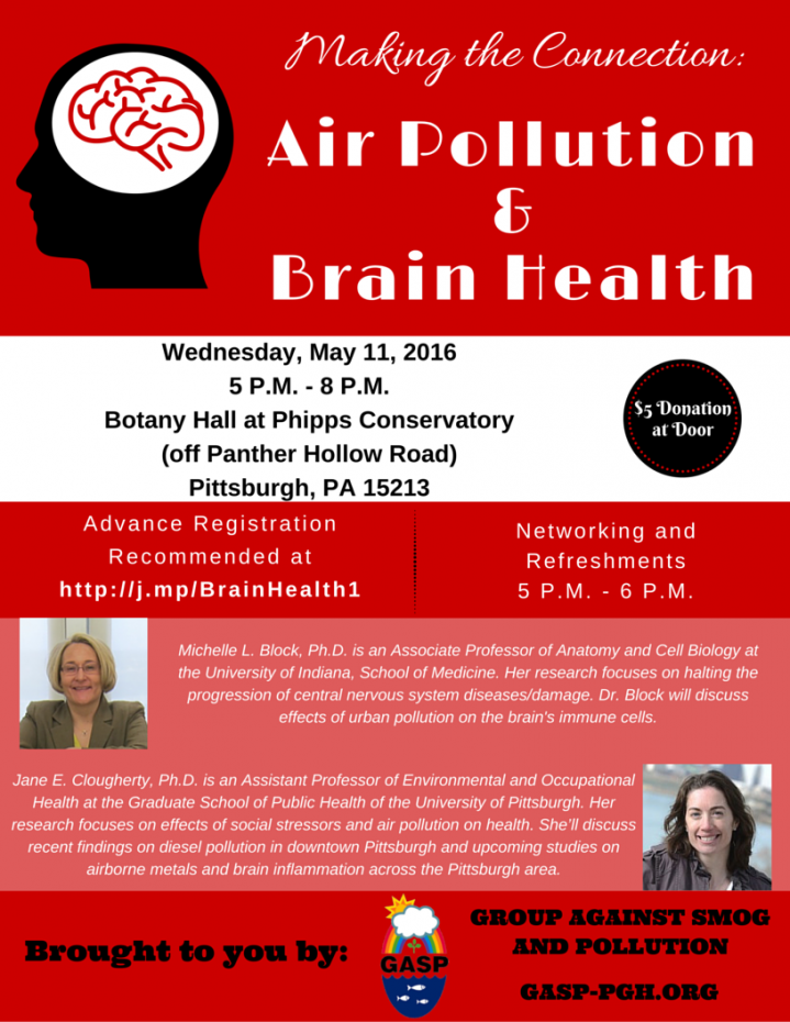 Making the Connection_ Air Pollution & Brain Health